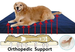 dogbed4less Large Orthopedic Dog Bed