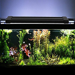 Amzdeal White Blue Aquarium LED Light