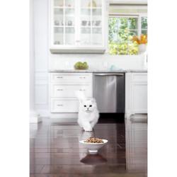 Purina Fancy Feast Grilled Wet Cat Food1