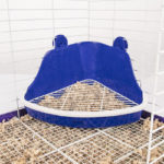 Plastic Scatterless Lock-N-Litter Small Pet Pan