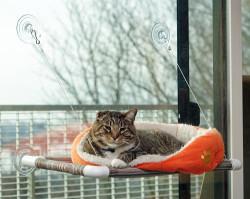 Original KITTY COT Cat Perch