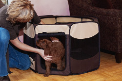 Pet Gear Travel Pet Pen for Cats and Dogs