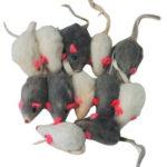 Rattling Fur Mice 12 pack