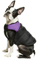 Gooby Padded Cold Weather Dog Vest