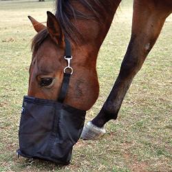 Cashel Feed Bag for Horses