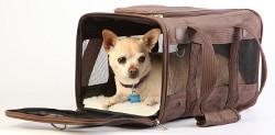 Sherpa Deluxe Pet Carrier