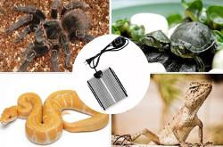 Vipe Reptile Heating Pad