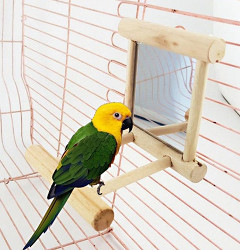 Amrka Pet Bird Mirror